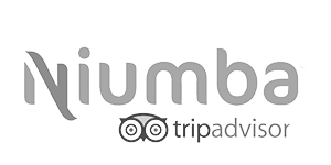 niumba-300x150-trans-75